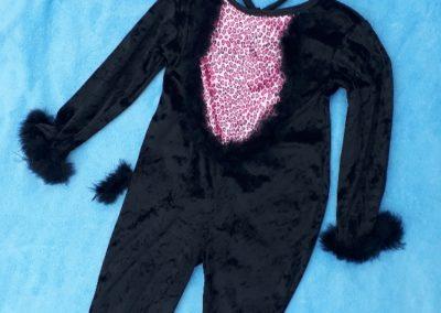 Kočička černá, 2-3 roky